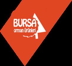 BURSA ORMAN ÜRÜNLERİ